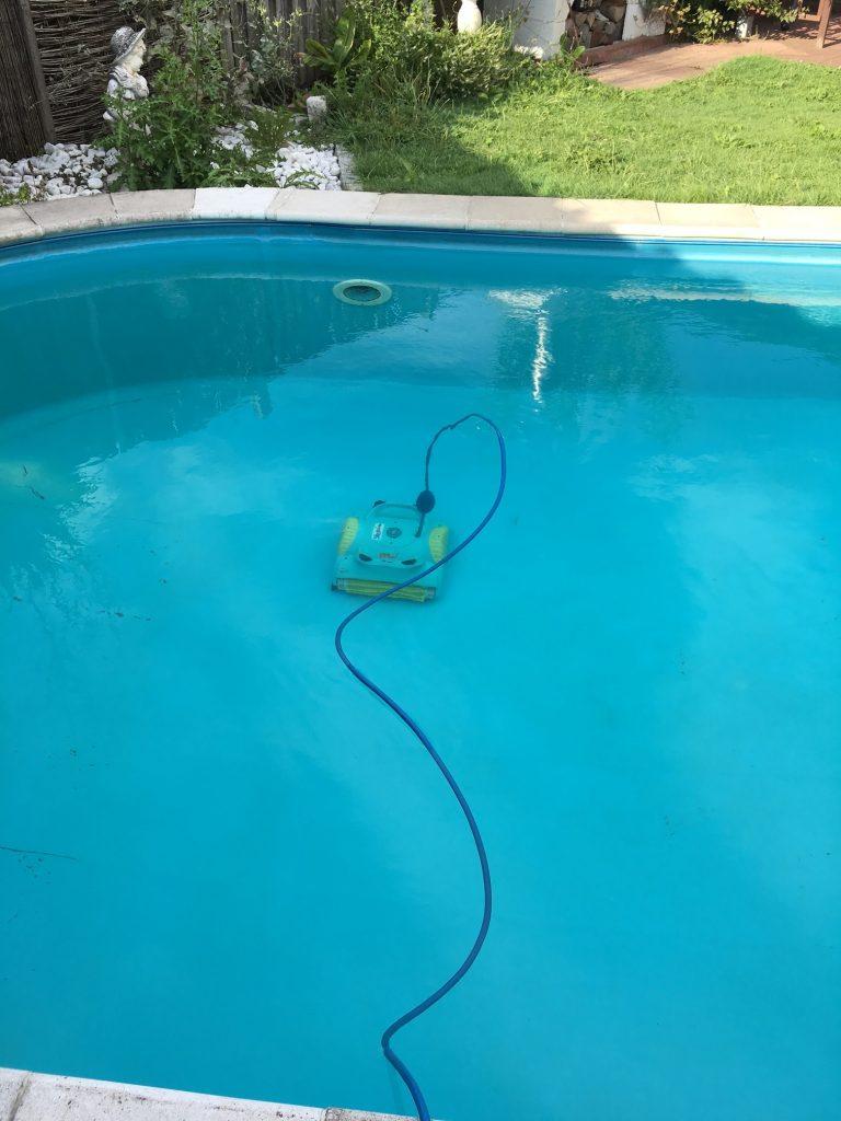 Dolphin reinigt Pool