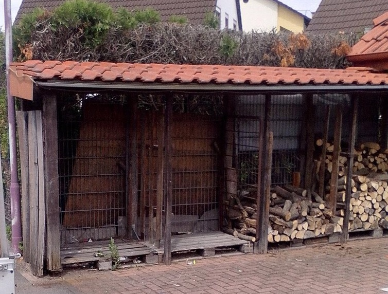 Holz Anfangsbestand
