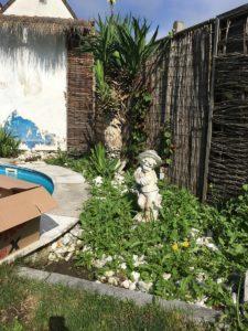 Unkraut im Garten ohne Unkrautfolie